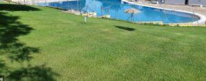 Mejor toalla de piscina